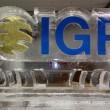 IGP Logo 1.5 block _ gold glitter