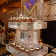 Taste of MetroWest ice server