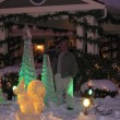 ice sculp pics 006