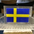 swedish flag luge with color